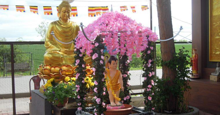 Registrace vietnamských buddhistů: třetí pokus